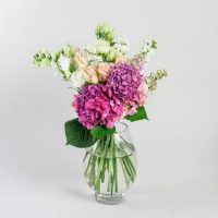 auckland_flowers